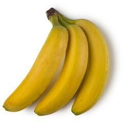 Fresh Organic Fair Trade Bananas (Musa Paradisica)