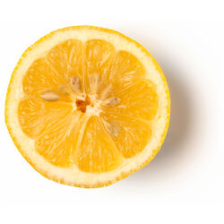 Infusion de citron frais biologique et de varech denté
