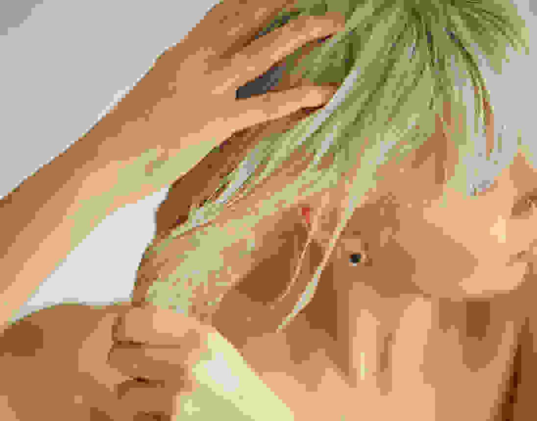 Image card - Traitement à l'huile chaude