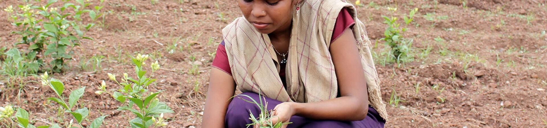 Banner - Women's Empowerment International Foundation