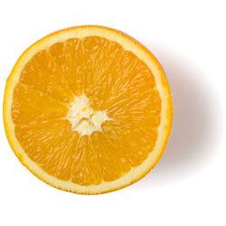 Oranges fraîches biologiques