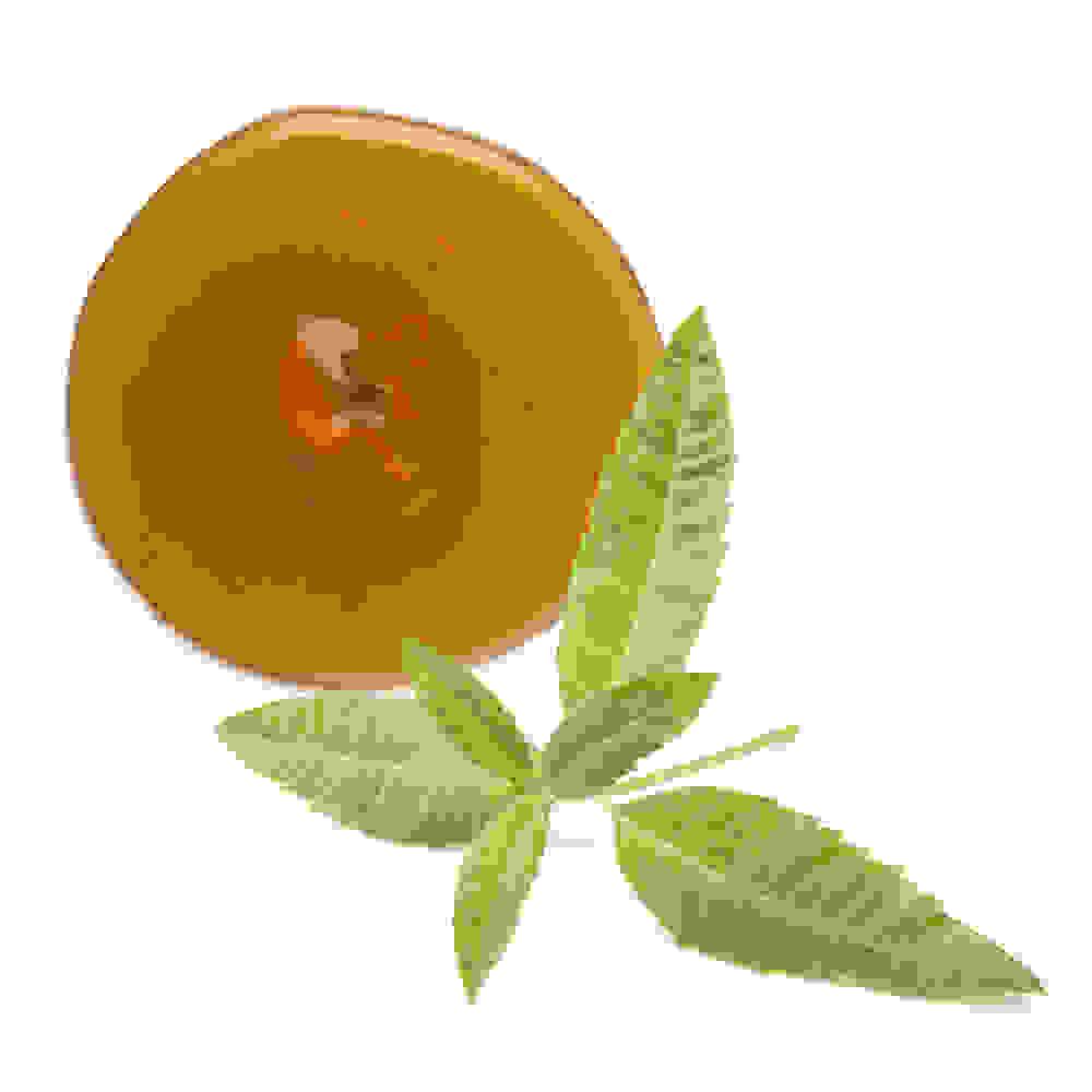 Verveine citronnelle et racine de valériane infusées dans du miel
