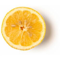 Infusion de citron frais et de cardamome