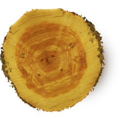 Huile essentielle de bois de cèdre