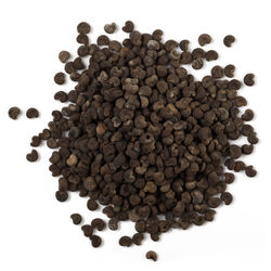 Huile essentielle de graine d'ambrette