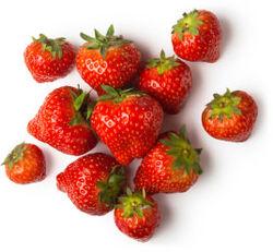 Infusion de fraise fraîche