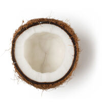Rapeseed Oil; Coconut Oil