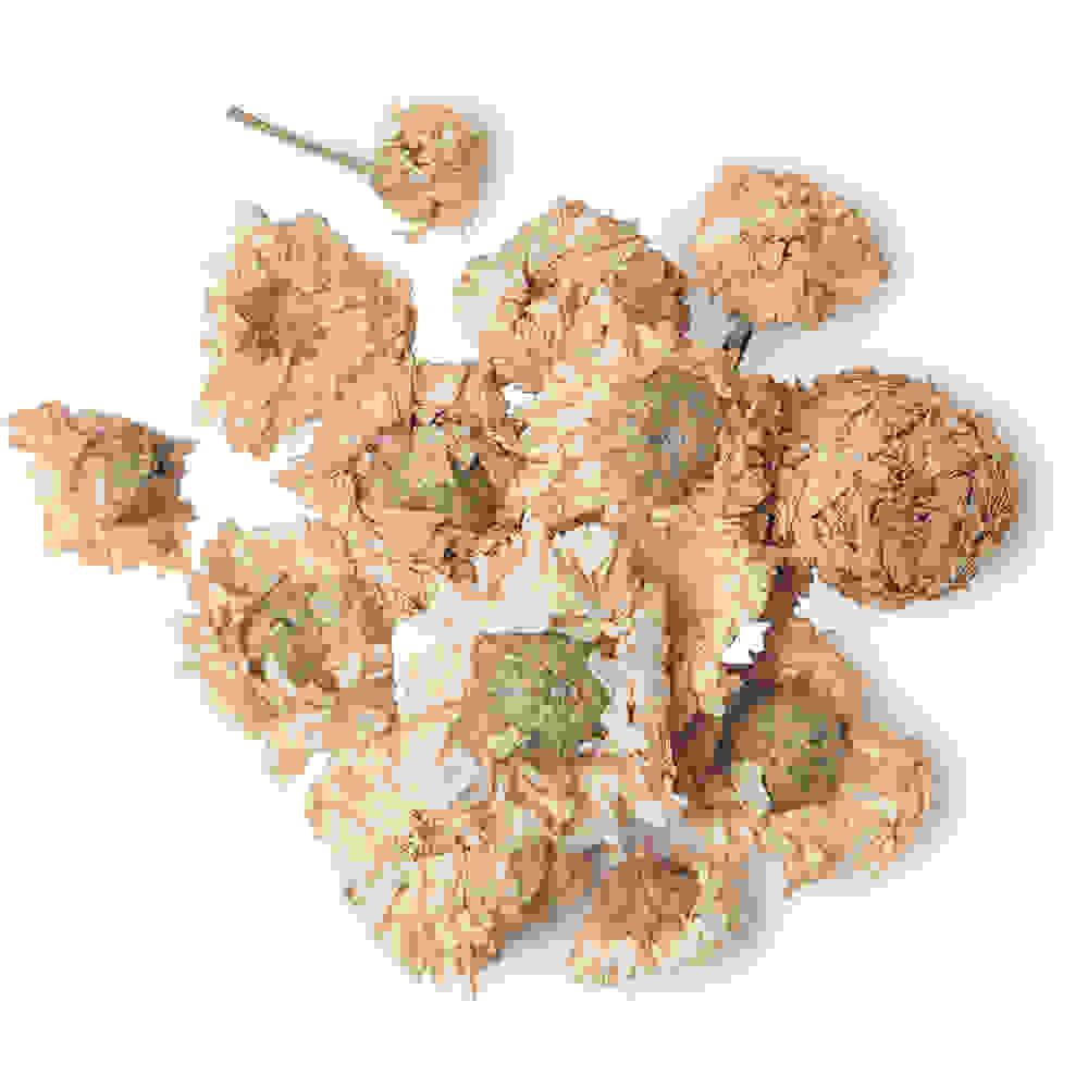 Dried Roman Chamomile Flowers