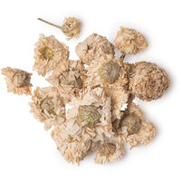 Dried Roman Chamomile Flowers