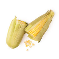 Farine de maïs