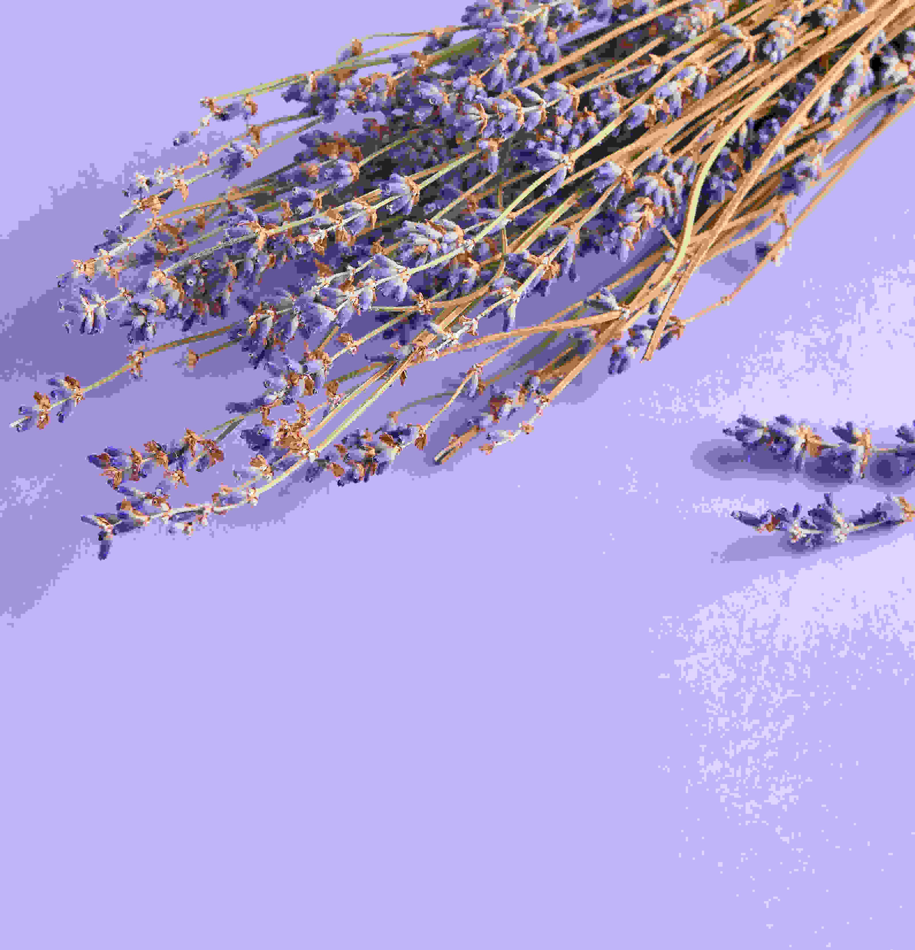 Image card - Soothing, balancing lavender
