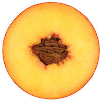 Fresh Peach Juice (Prunus Persica)