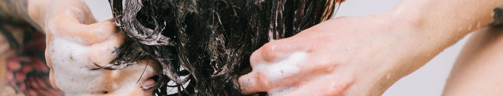 Banner - Comment choisir votre shampooing