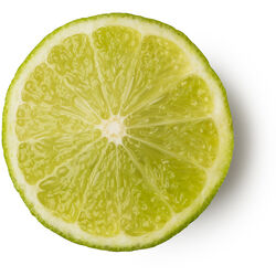 Fresh Organic Lime Extracted in Vodka