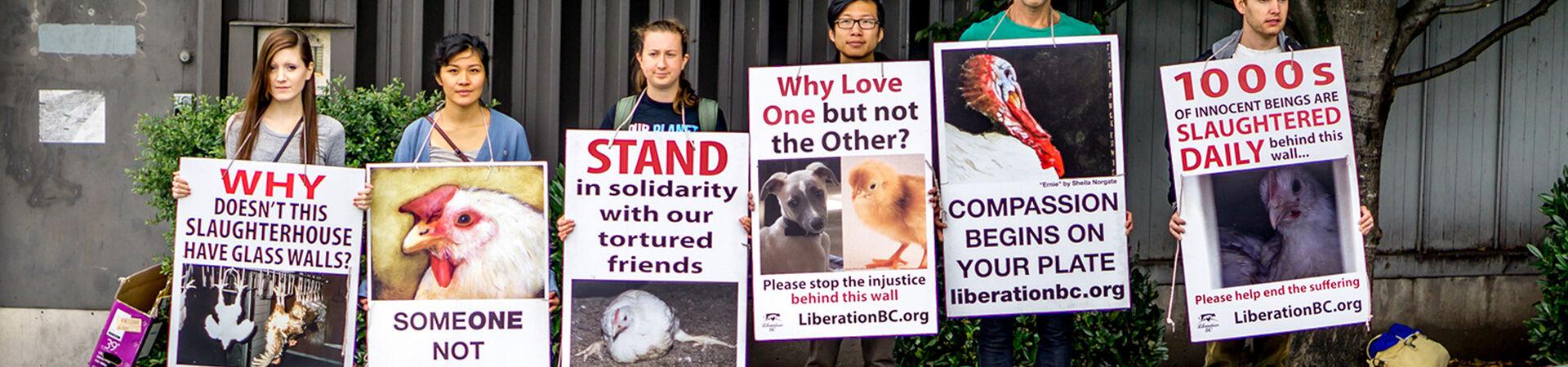 Banner - Liberation BC Society