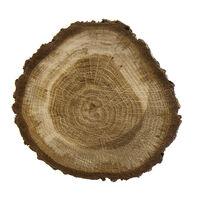 Absolu de bois de chêne