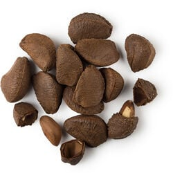 Huile de noix du Brésil
