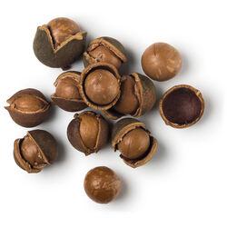 Huile de macadamia biologique