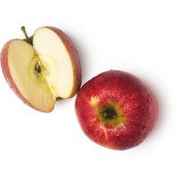 Jus de pomme frais (Pyrus malus)