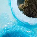 Seaweed Giant Bombshell