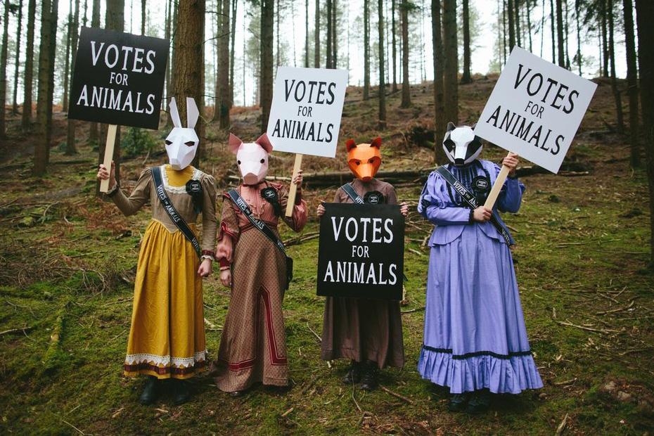 Un groupe de quatre personnes se tiennent dans un champ. Elles portent des masques d'animaux et tiennent une pancarte disant «votes for animals».