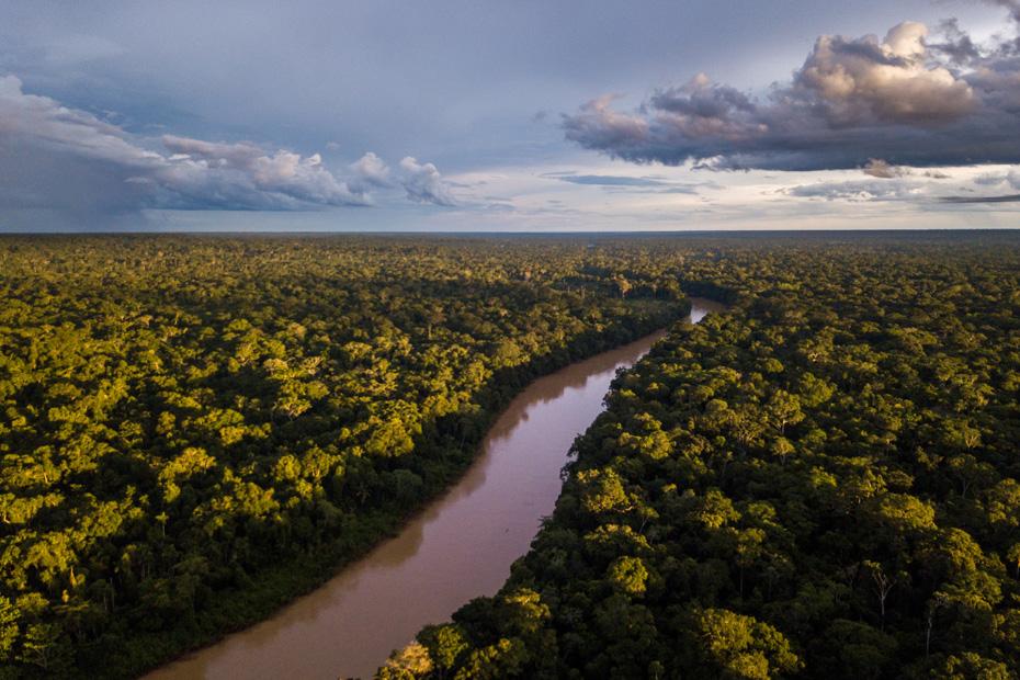 Une vue aérienne montre la forêt tropicale avec une rivière qui coule en son milieu.